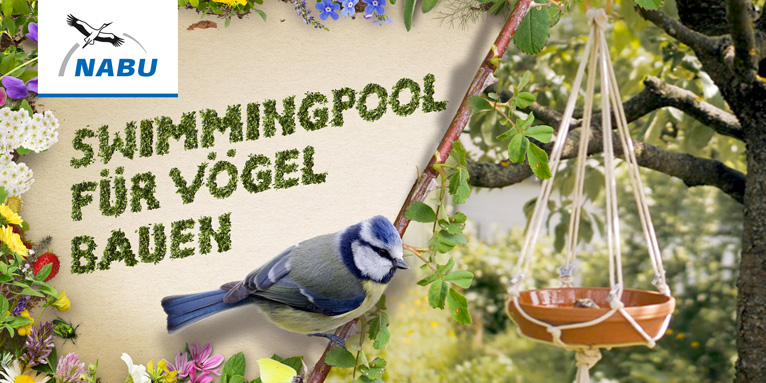 Video Vogelbad